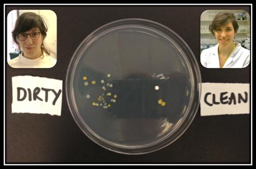 Ana Bacteria